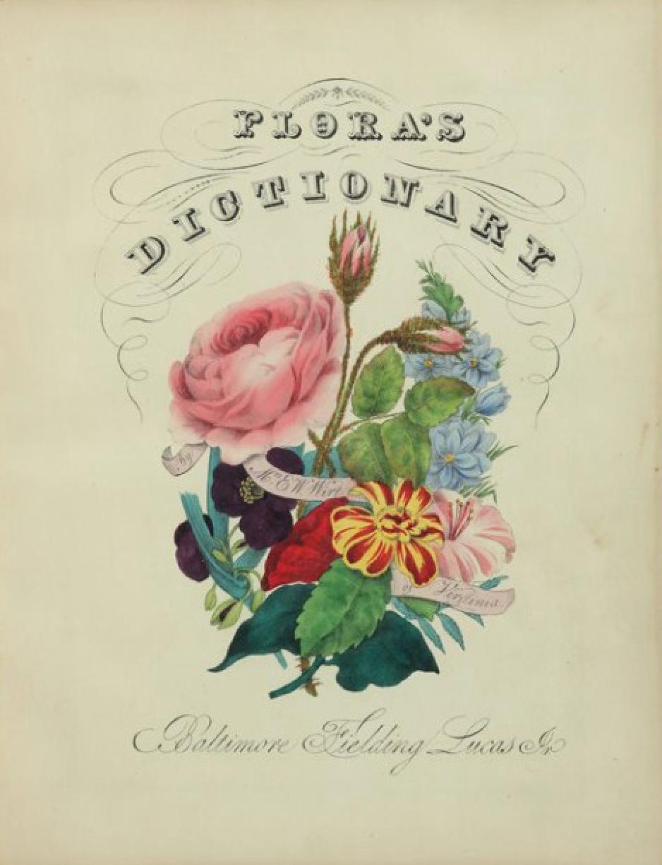 Floriography A Flowers Secret Meaning Weddinc